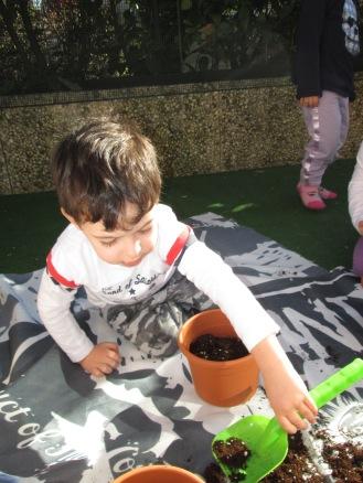 seminiamo le piantine